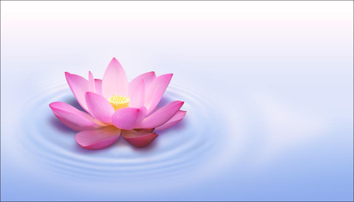 Foto di un fiore in un lago